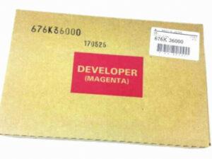 XE 676K36000 Developer M SC2020